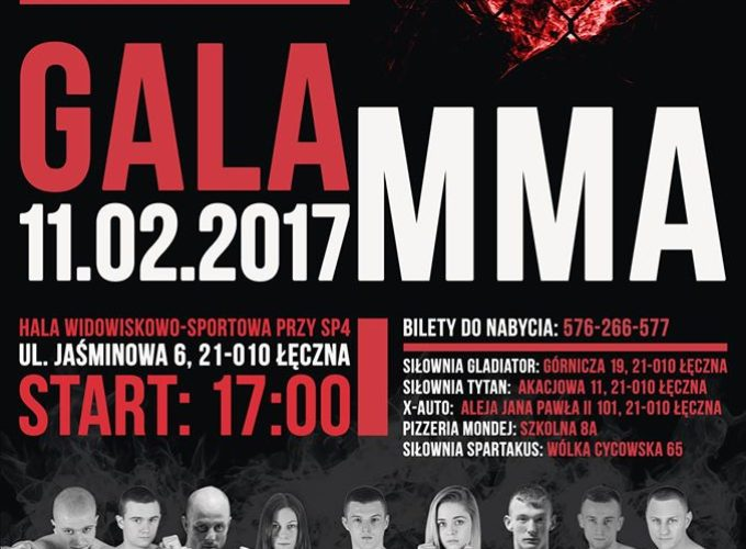 MMA Amator Cup 2017
